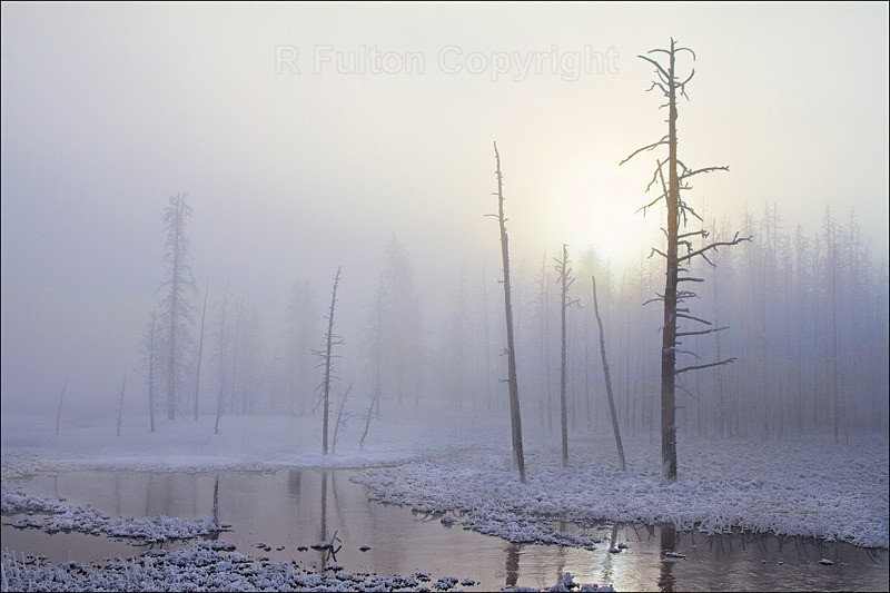 Daybreak Tangle Creek - Yellowstone