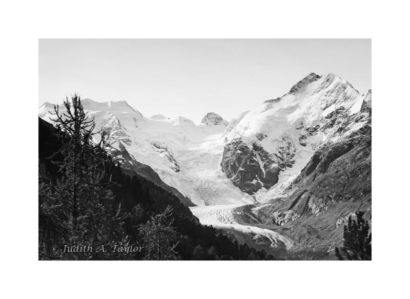 Bernina glacier