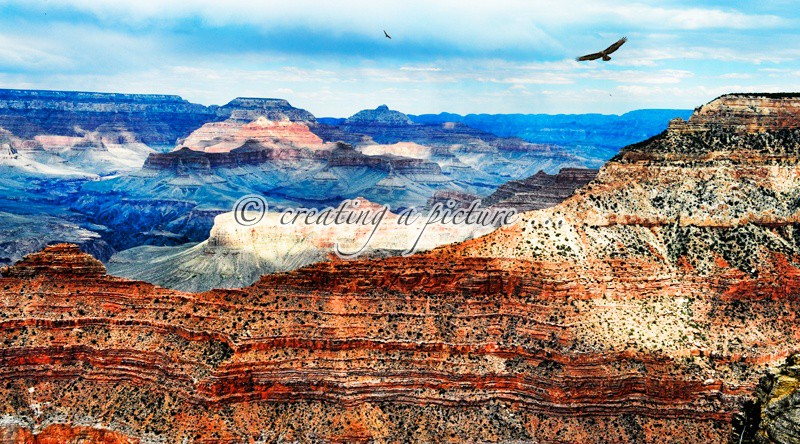 Mather Point - Landscapes