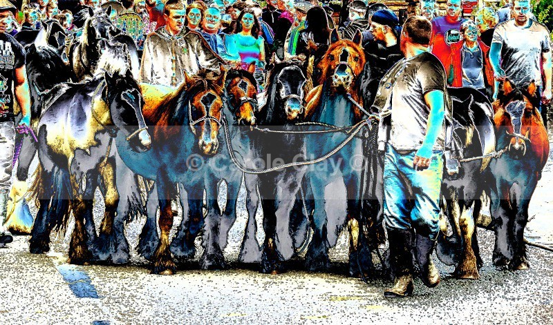 Herd - Appleby Horse Fair