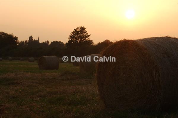 Hay Bales - Rural