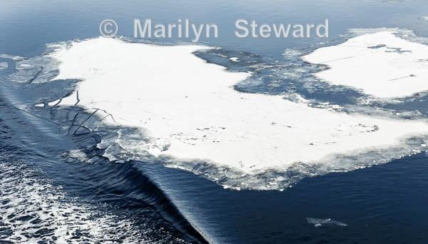 Ice break, Kirkenes - Norway Coast