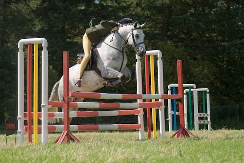 123 - Moniaive Horse Show 2008