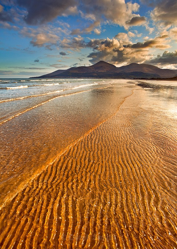 Golden Ripples - Beach At Murlough Nature Reserve