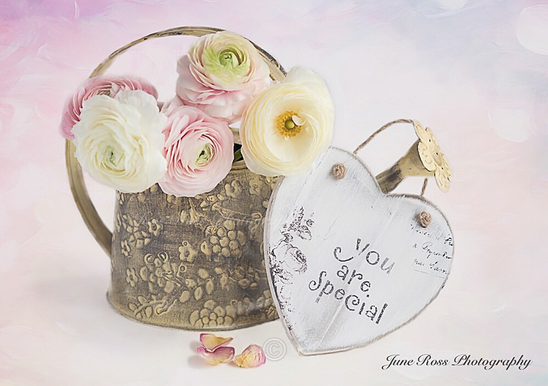 You are Special - FLOWERS