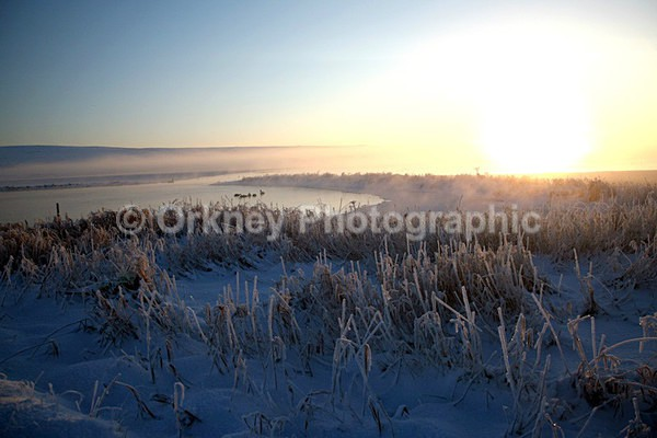 Stenness Loch snow - Orkney Images