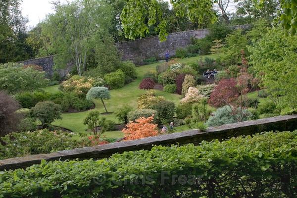 - Dabton Gardens