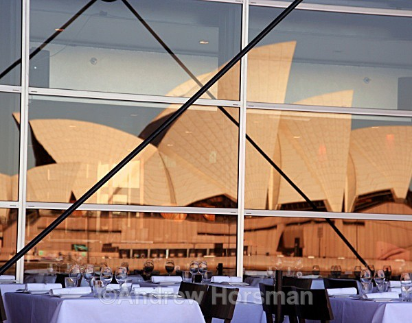 Opera House Reflection - Travel 3