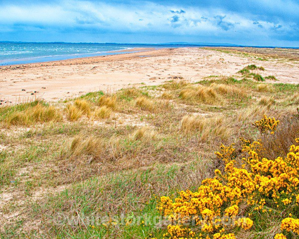 Dornoch Beach - Scottish Highlands