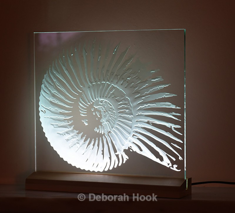 New ammonite 2, shown angled - Glass