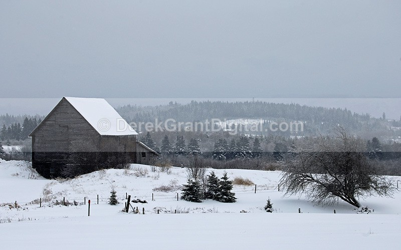 Vintage Vista - Old Barns & Buildings