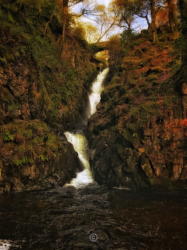 Autumn at Aira Force - Lake District