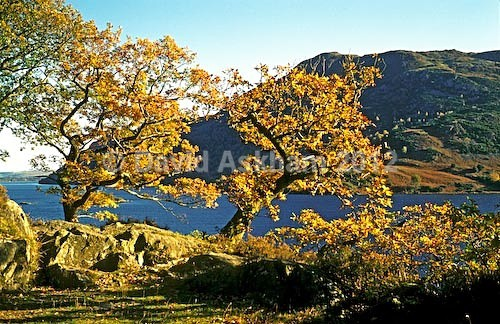 Ullswater - Autumn