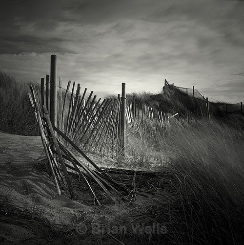 Beach Fence, Hemsby - The Black & White Gallery