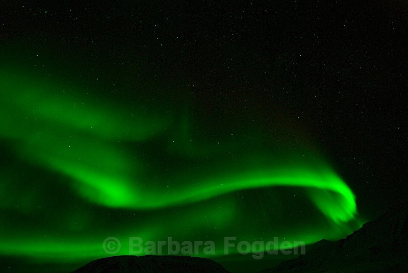 Northern lightin Adventdalen 1874 - Polar night