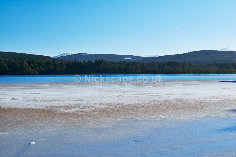 Winter at Loch Garten | Caringorms Landscape Photography
