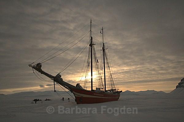 Noorderlicht 5467 - Winter in the daylight