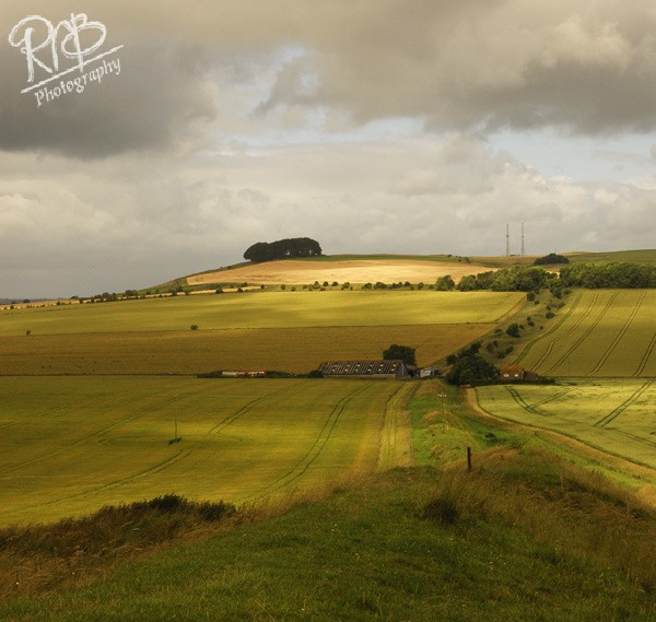 Wiltshire View - Wiltshire & West Country Landscapes