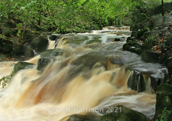 Rathmell Beck (image Rath B 06) - Waterscapes and Waterfalls
