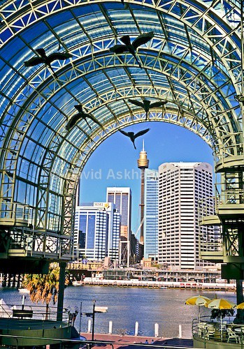 Darling harbour - Travel & Landscape