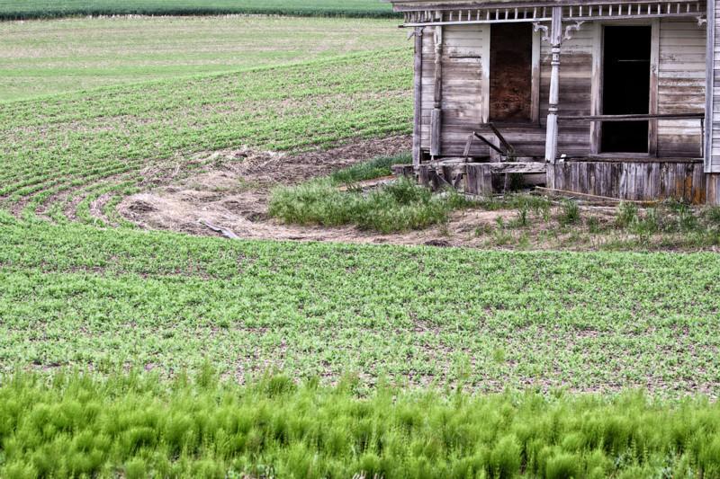 farmhouse - Palouse