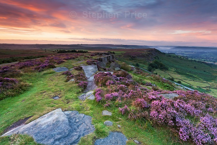 Curbar Edge | Derbyshire Photography | Peak District Heather