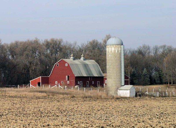 Country Barn - Barns & Remnants