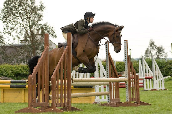 28 - Equestrian Photography