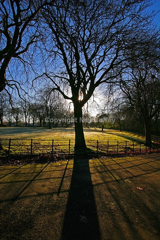 Kelvingrove Park, Glasgow - Cities & Towns