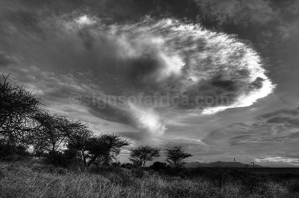 Samburu Landscape Clouds, Kenya