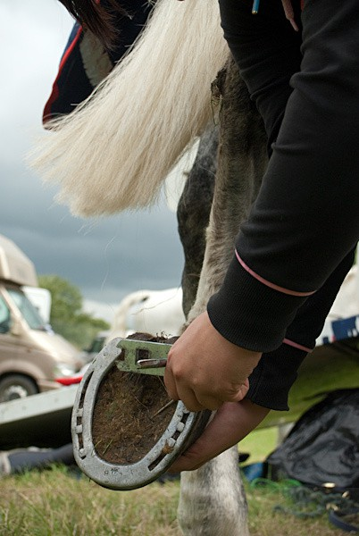 31 - Moniaive Horse Show 2010
