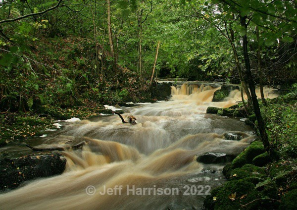 Rathmell Beck (image Rath B 03) - Waterscapes and Waterfalls