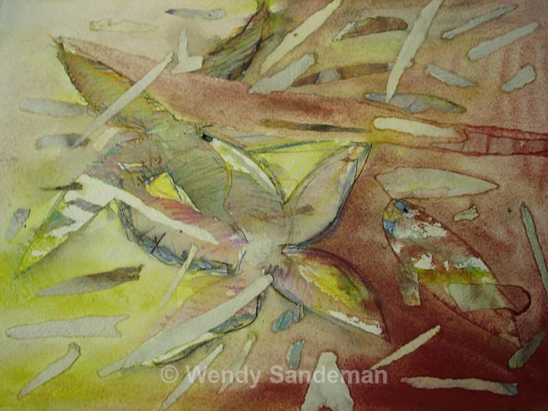 AStarfish - Gallery