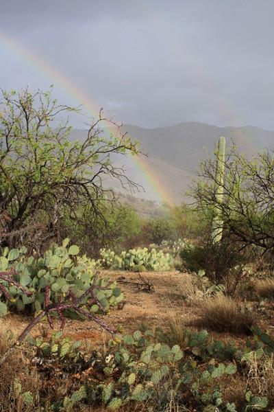 Double rainbow - Tuscon, Arizona