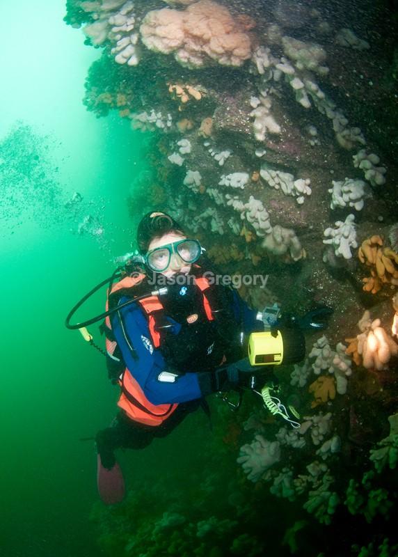 Diver observes wall reef 1 - Diver exploring marine environment