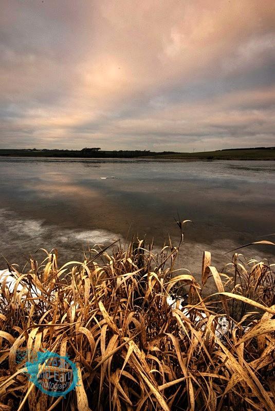 Frozen Tamar - Landscapes