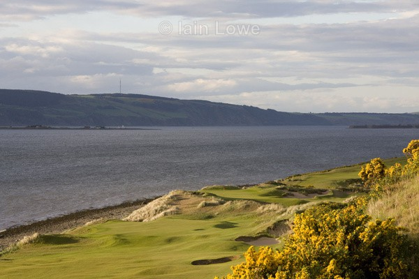 Castle Stuart 10th  11th Greens with Gorse in bloom - Castle Stuart Golf Links
