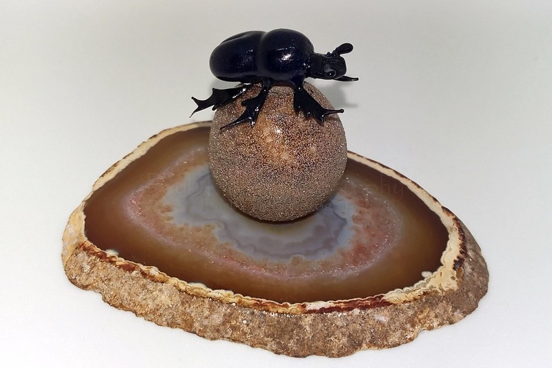 Dung beetle - The art of glass