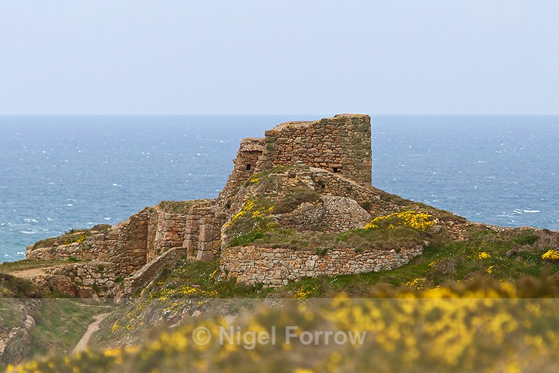 Ruins of Grosnez Castle - Guernsey & Jersey, Channel Islands