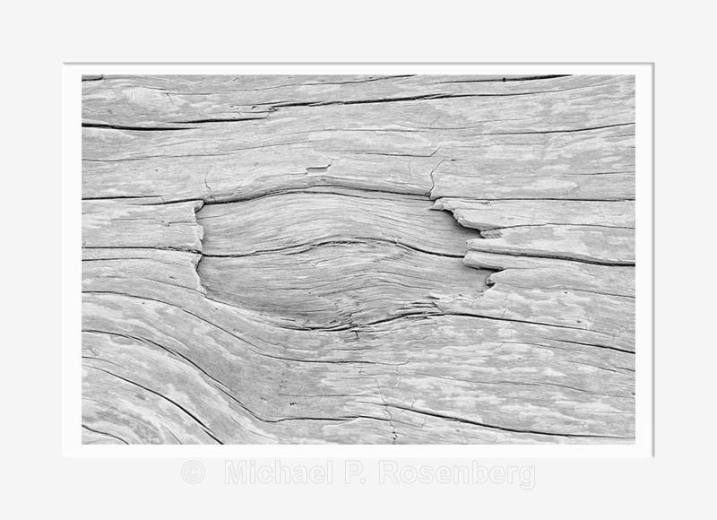 Driftwood #6, Rialto Beach WA (2014/D00786) - Pacific Coast