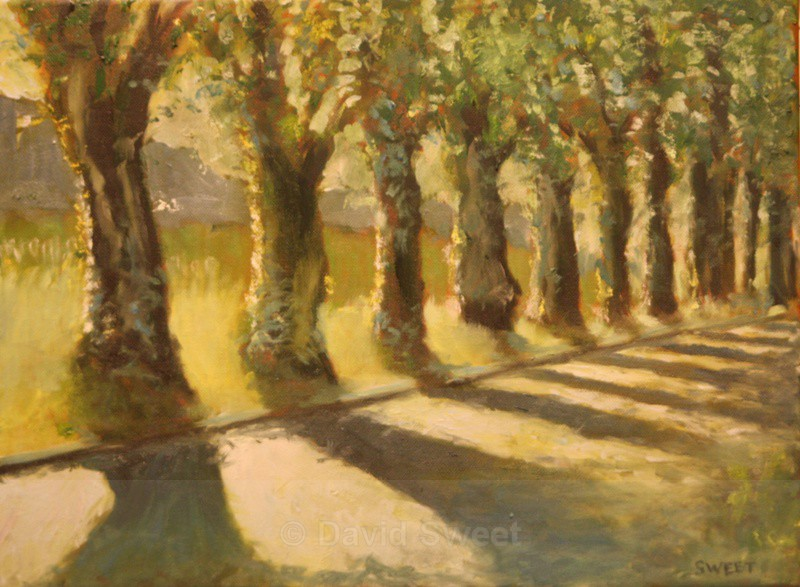 Malone Golden Glow - Oil Paintings