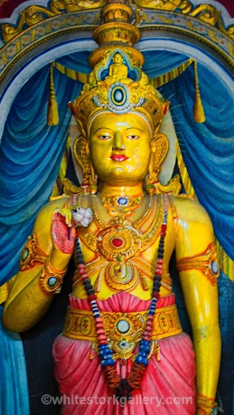 Galle Buddhist Temple, Sri Lanka - Asia