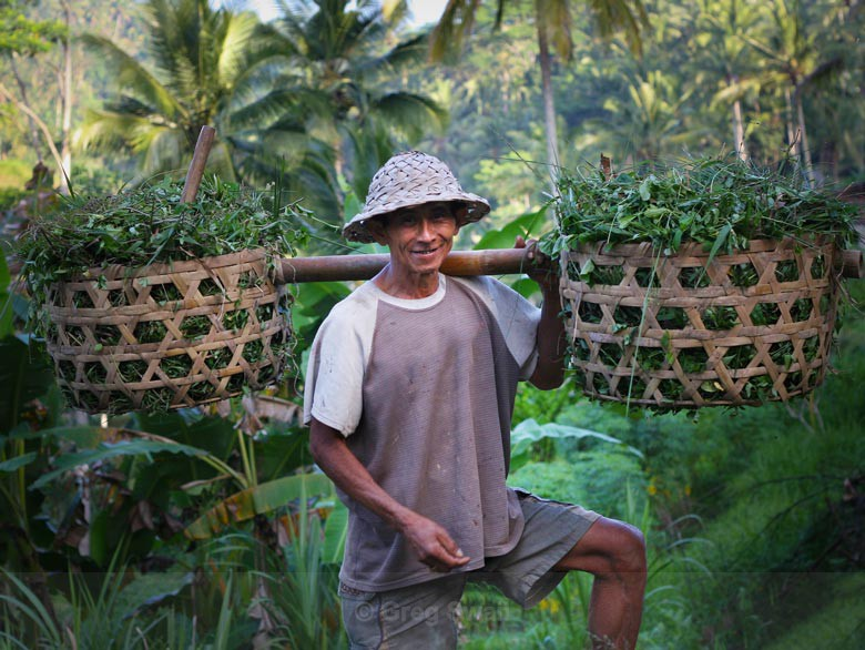 Ceking Character - Bali's Culture and Characters