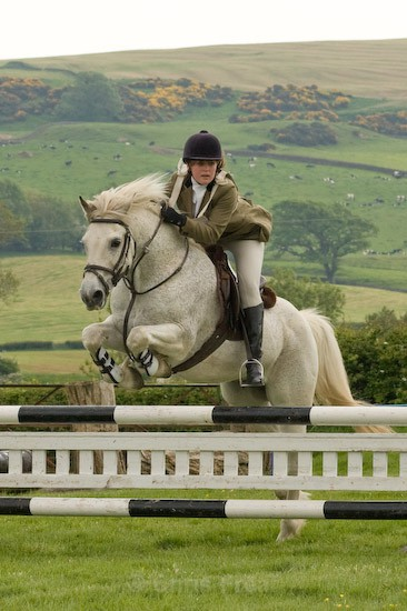 27 - Equestrian Photography