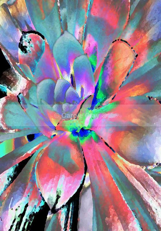 Flower SS006 - Skelton Show