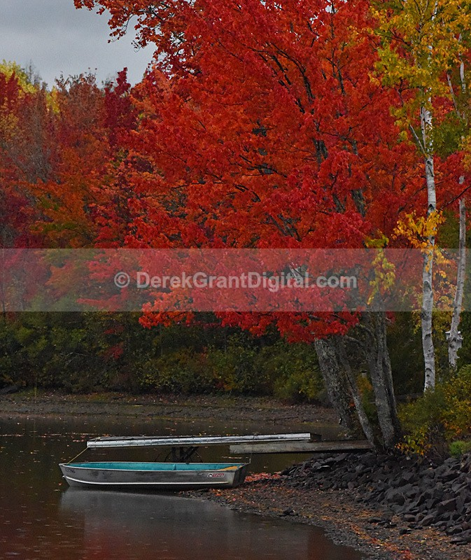 Autumn Foliage New Brunswick Canada Fall Colors - New Brunswick Autumn Foliage