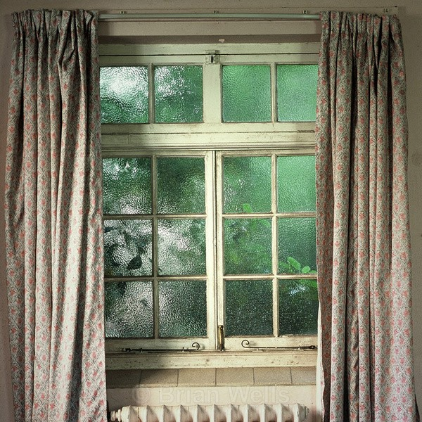 Window With Trees Outside, Great Plumstead Hospital - Windows and Doors/ Curtains and Wallpaper
