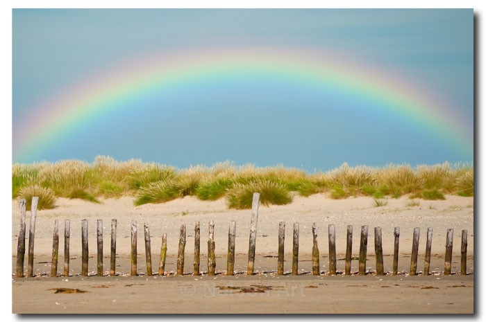 Beach Rainbow - Scapes