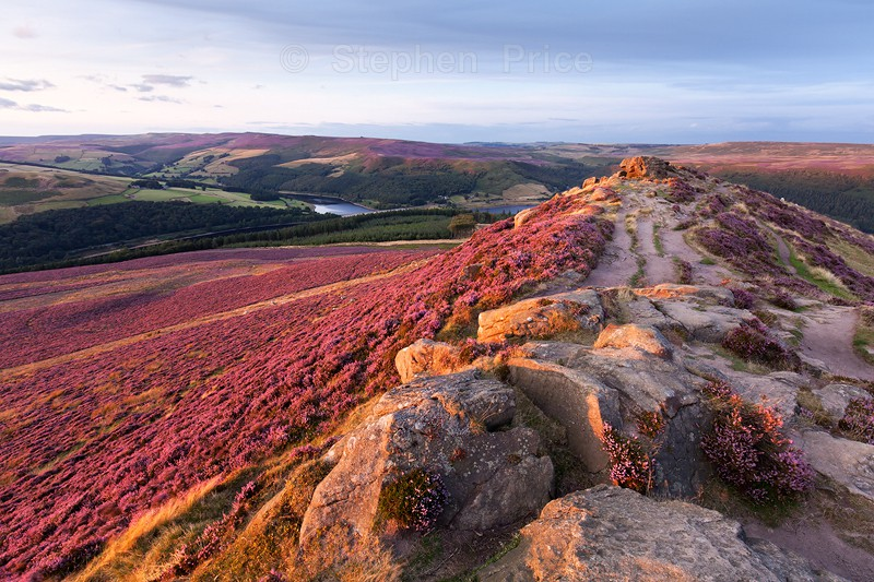Win Hill Summer Sunset | Peak District Heather Photography