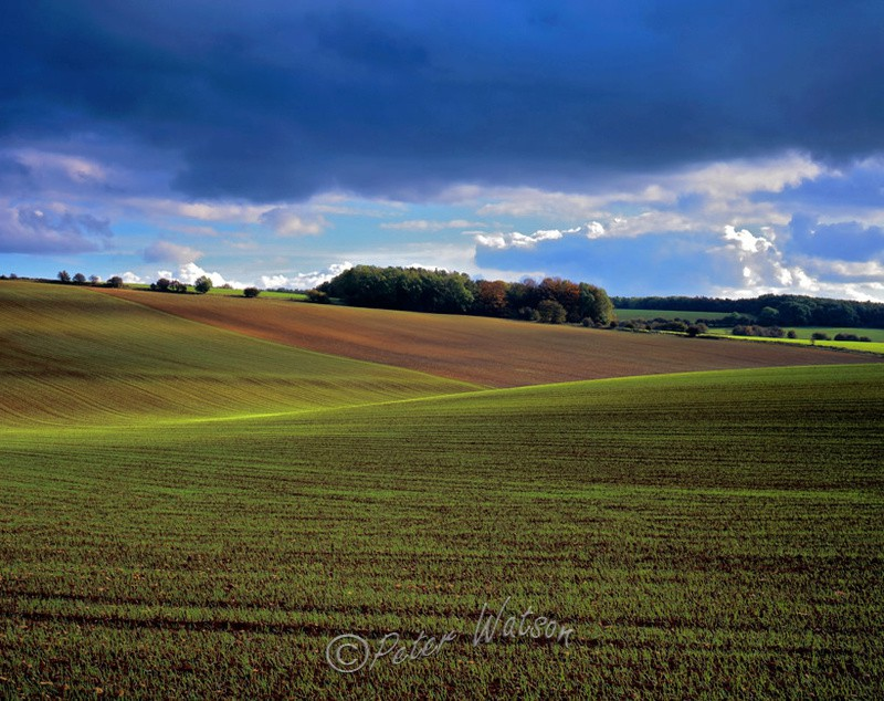 Near Stow-on-the-Wold Gloucestershire - England